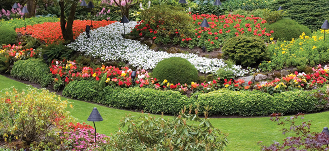 Garden-650x300.jpg