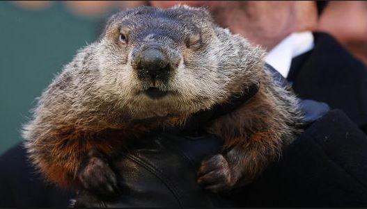 groundhog day.jpg