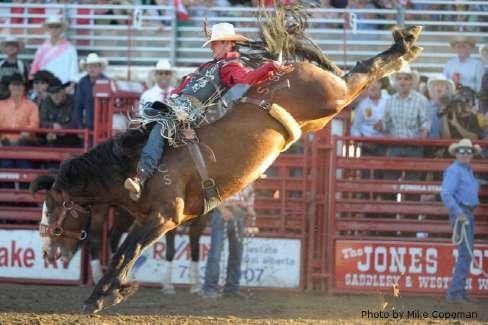 rodeo bronc